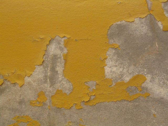 Rising Damp_Peeling paint_The Happy Habitat