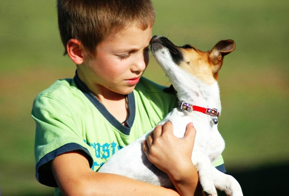 Dog and boy www.thehappyhabitat.com.au