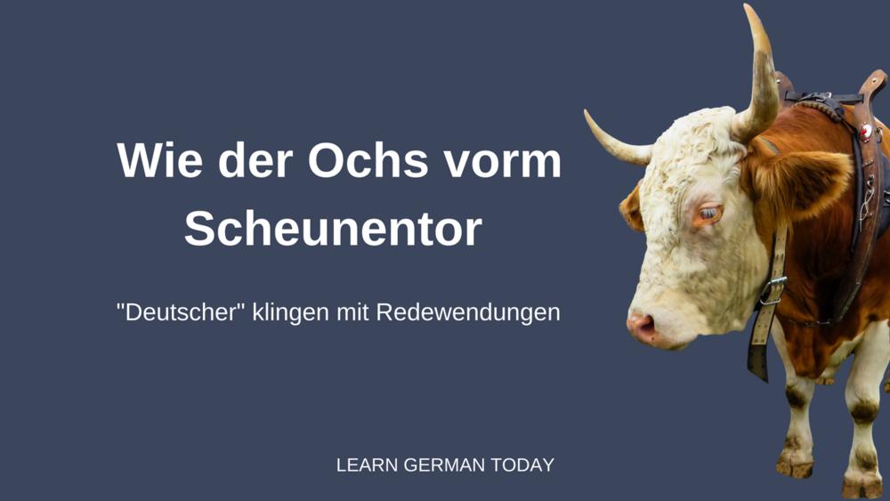 Blogpost: Deutscher klingen mit Redewendungen