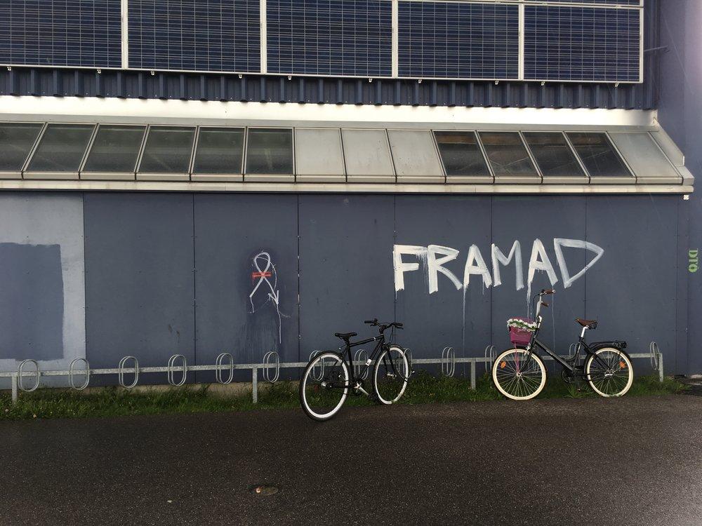 En graffitimaler med humor eller staveproblemer har udsmykket bagsiden af tribunen på Sundby Idrætspark.   Foto: Sture Sandø