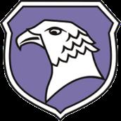 FC Falke 06.png