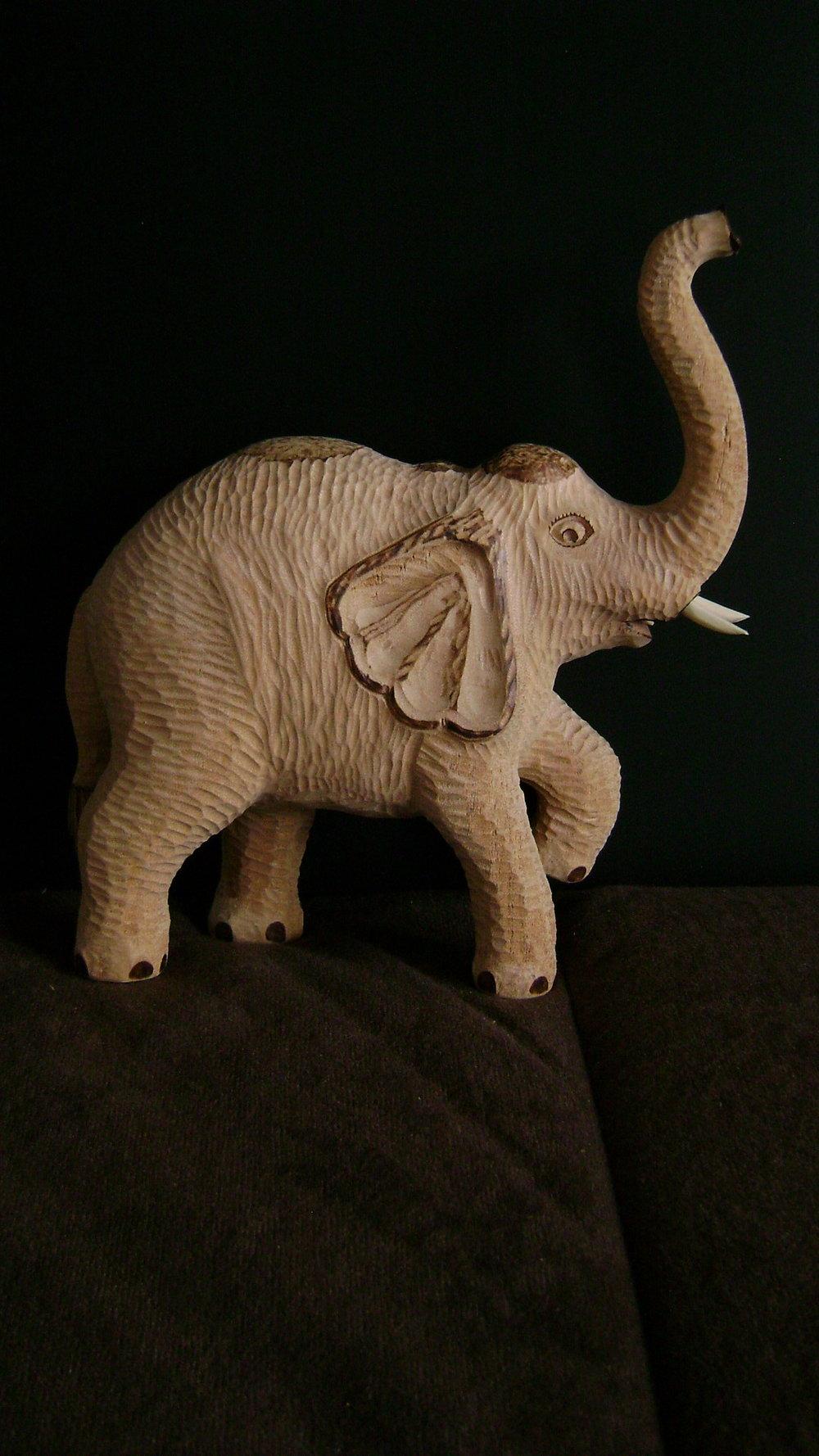 Elefant (4).JPG