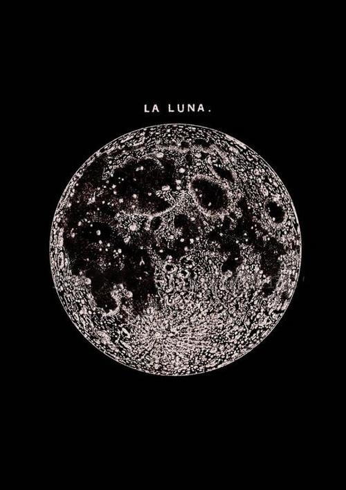 Bohemian Prints La Luna.jpg