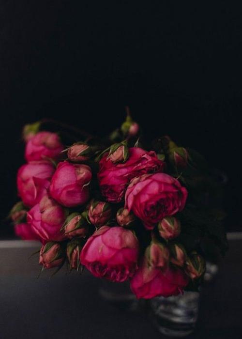 Bohemian Prints Roses.jpg