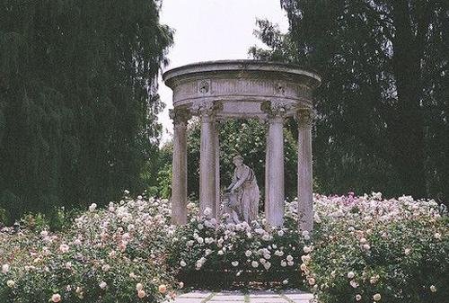 Bohemian Prints Rose Garden Grecian .jpg