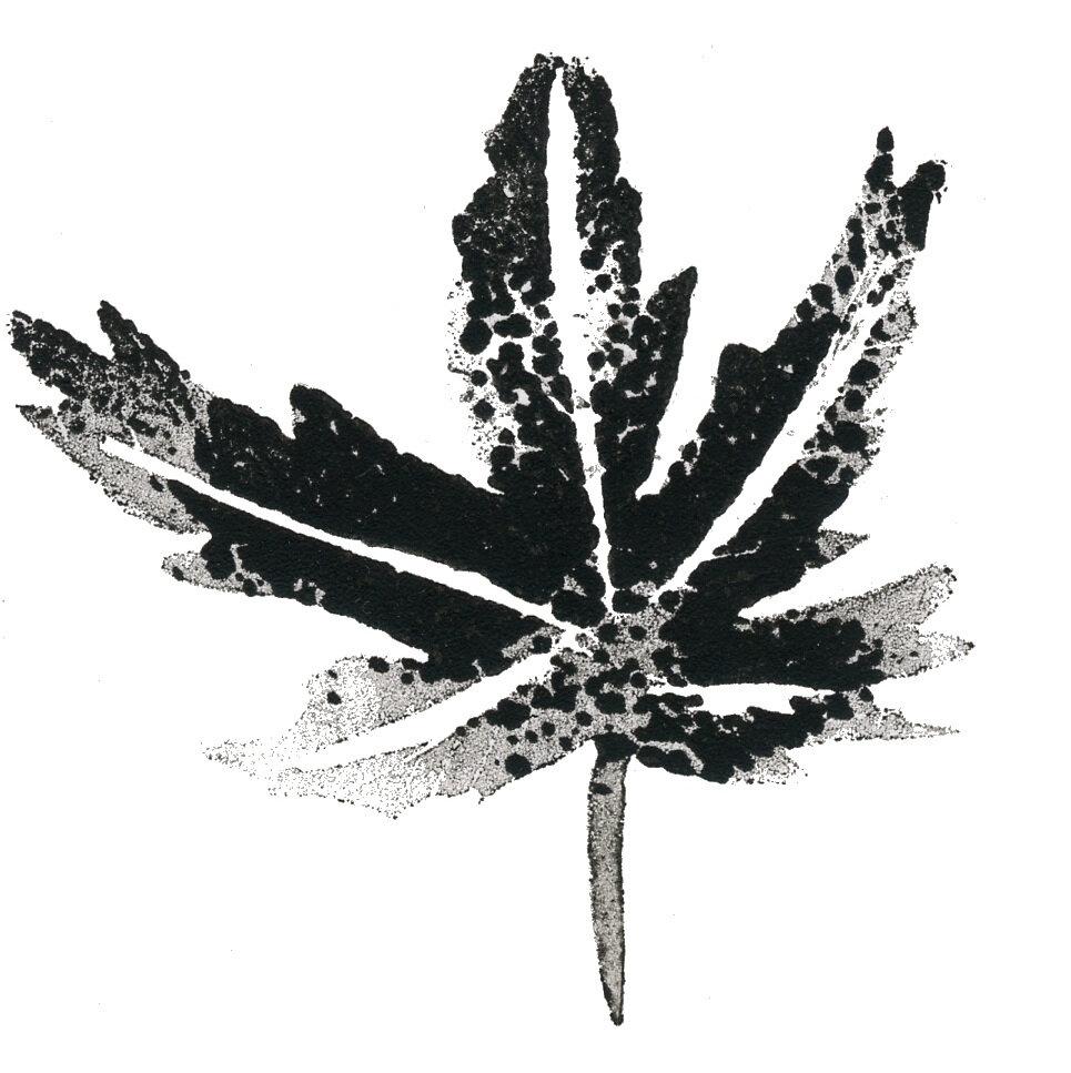 ——-Leaf——-