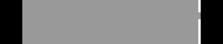 logo-grey-Vaillant.png