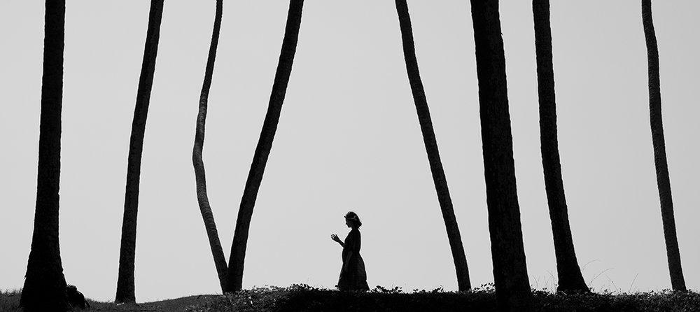 08 Forest.jpg
