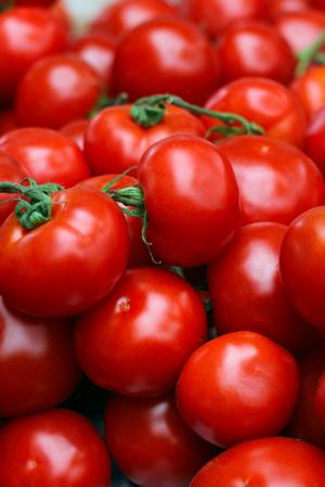 tomato-recipes.png