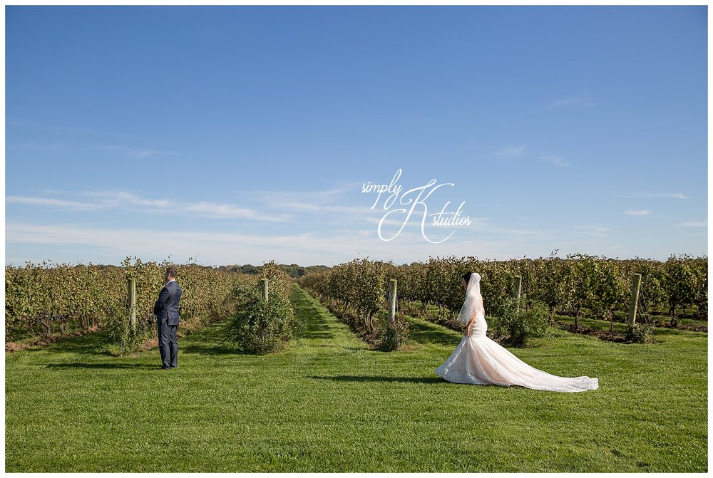 34 First Look at a vineyard.jpg