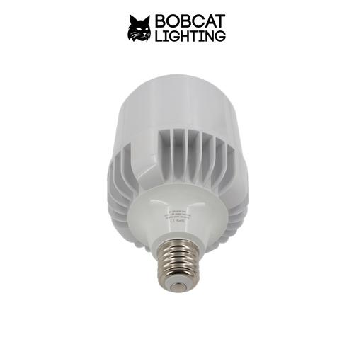 LED High Bay Light Bulb 60W, 5900 Lumens. Retrofit Bulb for High Bay ...