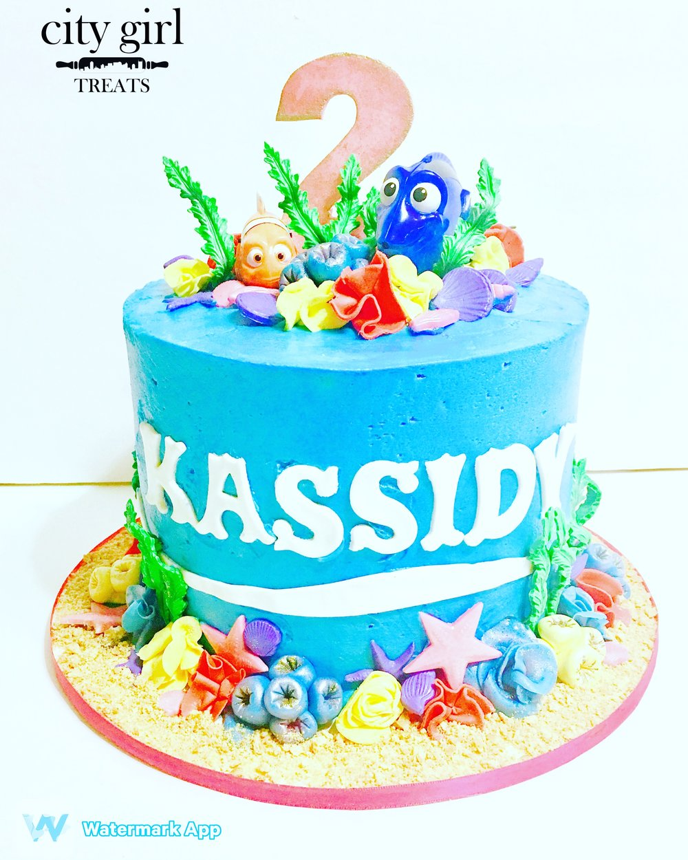 Designer Cakes Nashville TN Based Bakery, City Girl Treats Nashville Children Party Cakes