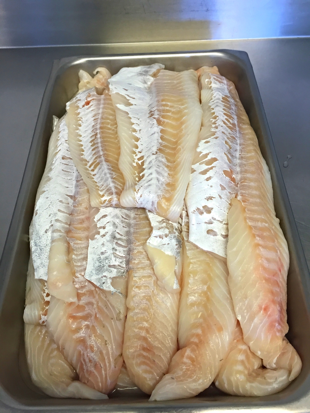 Fresh Atlantic Codfish