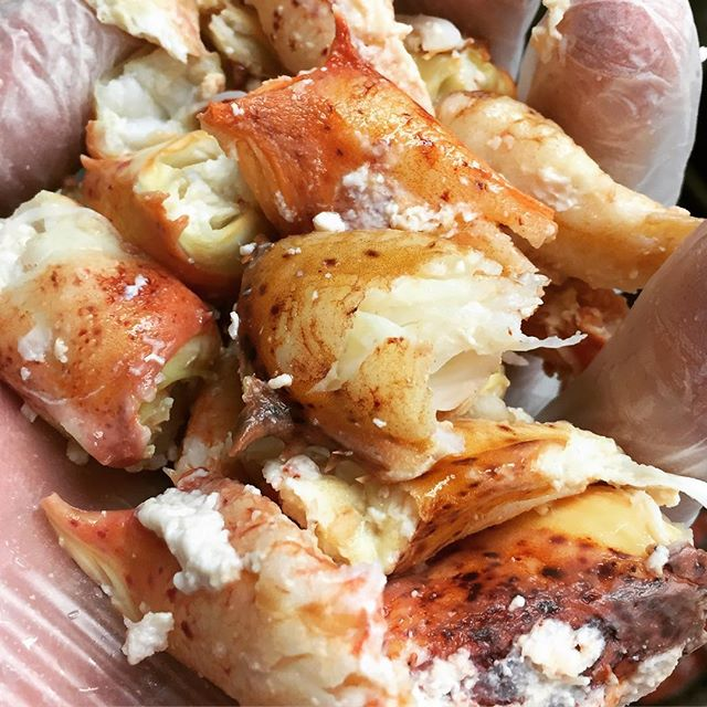 One of these days I'm going to literally make myself a knuckle sandwich. #goals #cooking #edgartown #marthasvineyard #lobster #local