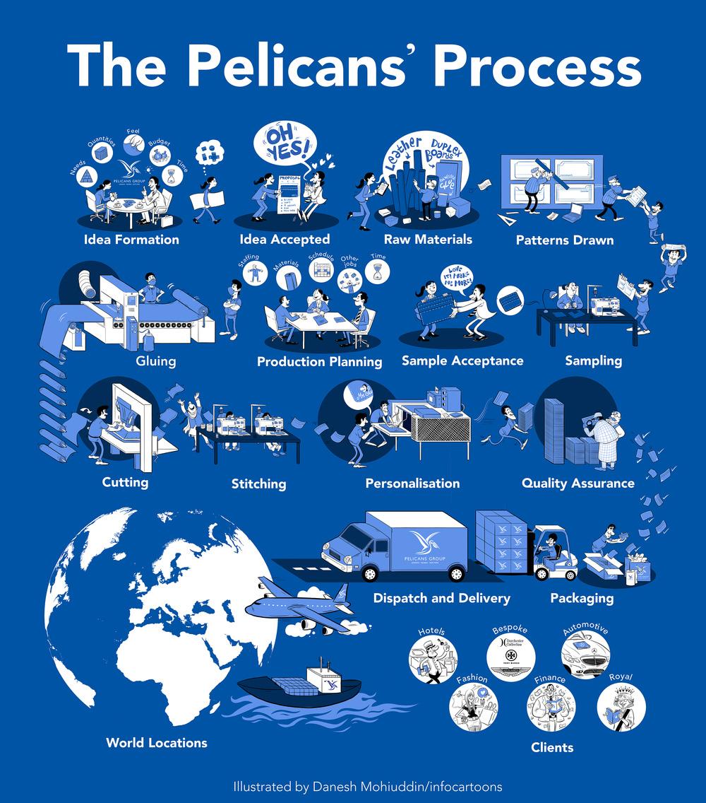 pelicans-process