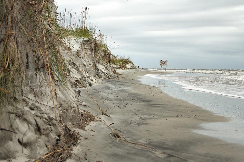 Sand dunes before Hurricane Irma at Tybee Island.