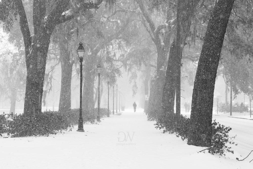 Savannah, GA gets snow.
