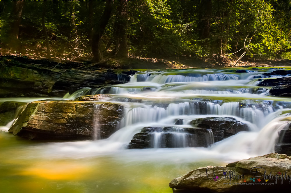 The setting sun and fall foliage colors the water of a flowing creek.