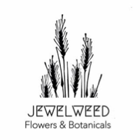 Jewel Weed Flowers & Botanicals