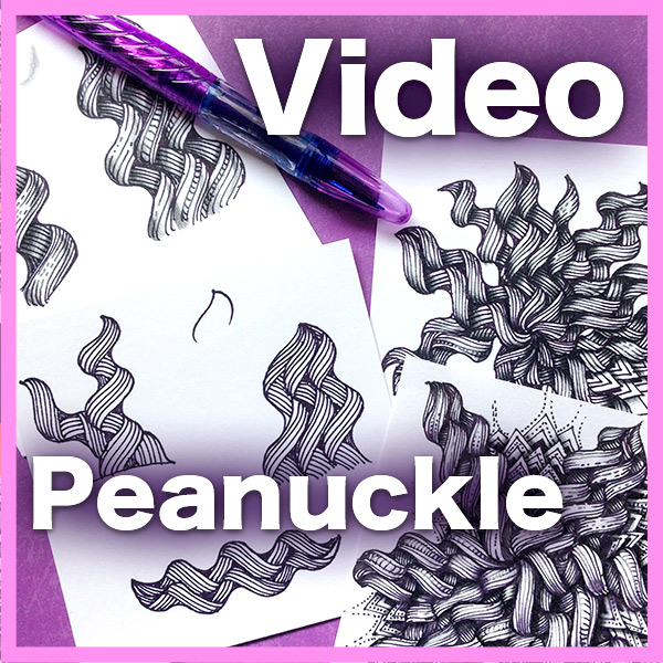 Peanuckle video - Join me in this 35-min video while while I show you how to create Peanuckle tangle in a completely new and versatile way, forming beautiful 3-dimensional curlicues.