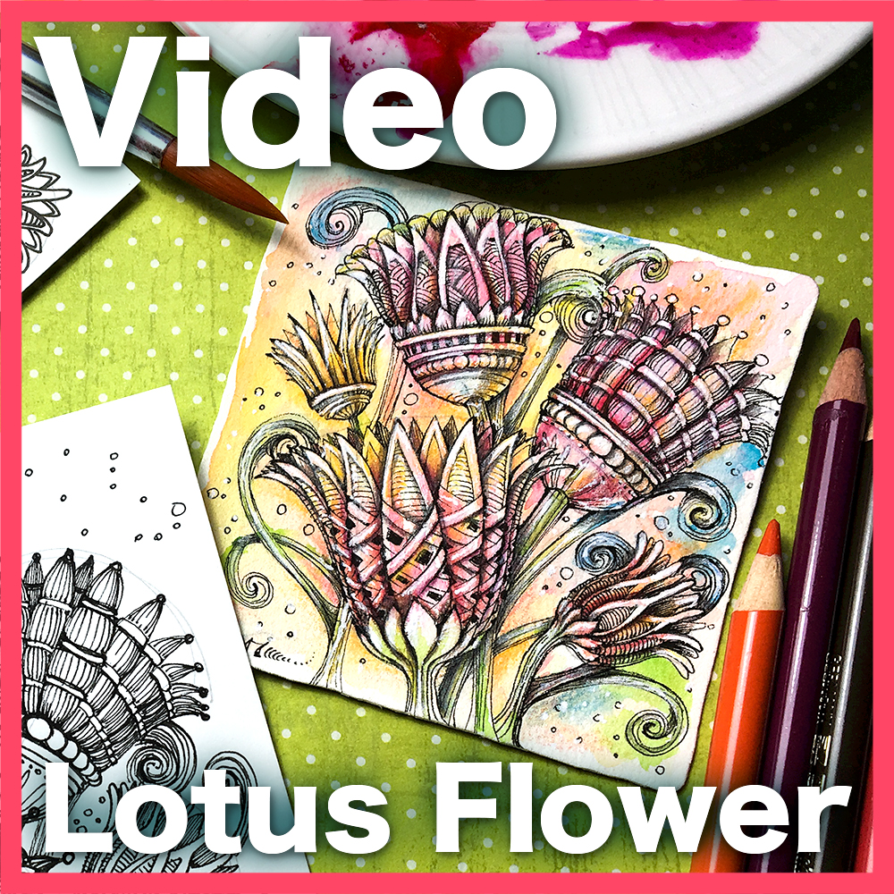 Lotus Flower Video Lesson - Learn exactly how to create painterly ELEGANT STYLIZED flowers based on Egyptian lotus motif, using the power of foreshortening to create 3D shapes. An advanced hour-long video.