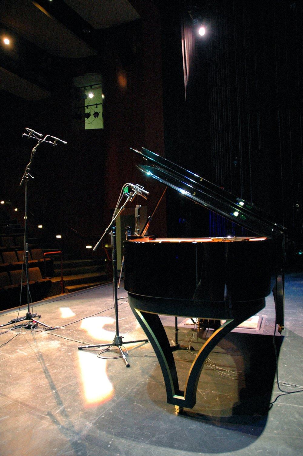 Lynne_Arriale_Piano_Recording_Custom_Design_jelliottco.jpg