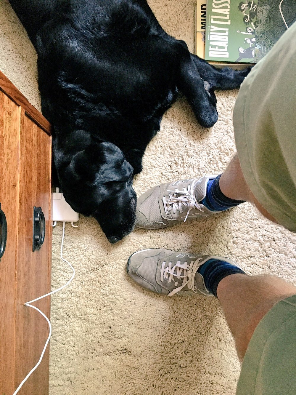 At Winning Edits, we like to work with animals at our feet (even if that means suffering from Dog Fart).