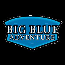 big-blue-logo-220x220.png
