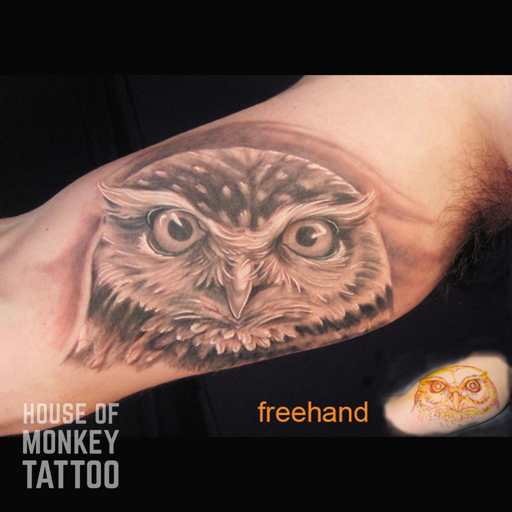 lalo 203 owl arm 1 copy.jpg