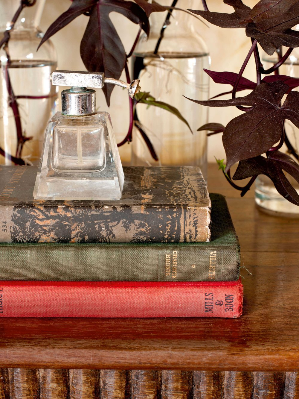 The house is dotted with old books that are a part of his family collection, perfume bottles, plants and creepers.