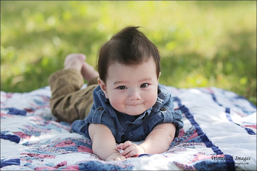 4 Month Old Baby Photography Calgary The Perfect Age For Older Baby Photos Windrush Images