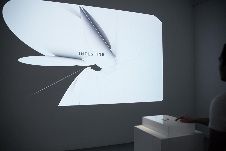 exhibition07.jpg
