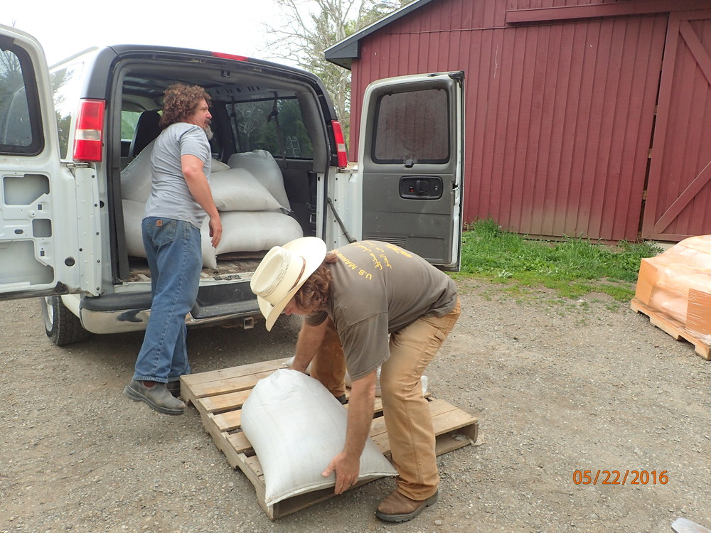 Dennis and Dieter loading up the pallet.