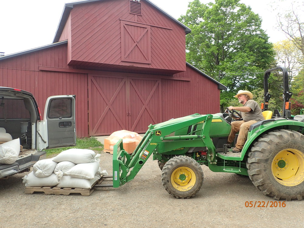 Dennis using the fork truck to bring the pallet of barley into the malt house for processing.