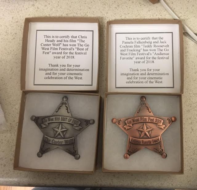 award badges.jpg