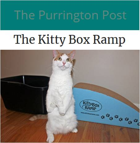 INSPIRING STORIES   We came across an ingenious solution called The Kitty Box Ramp which was specifically designed to help disabled, injured and arthritic cats to enter and exit their litter boxes comfortably.