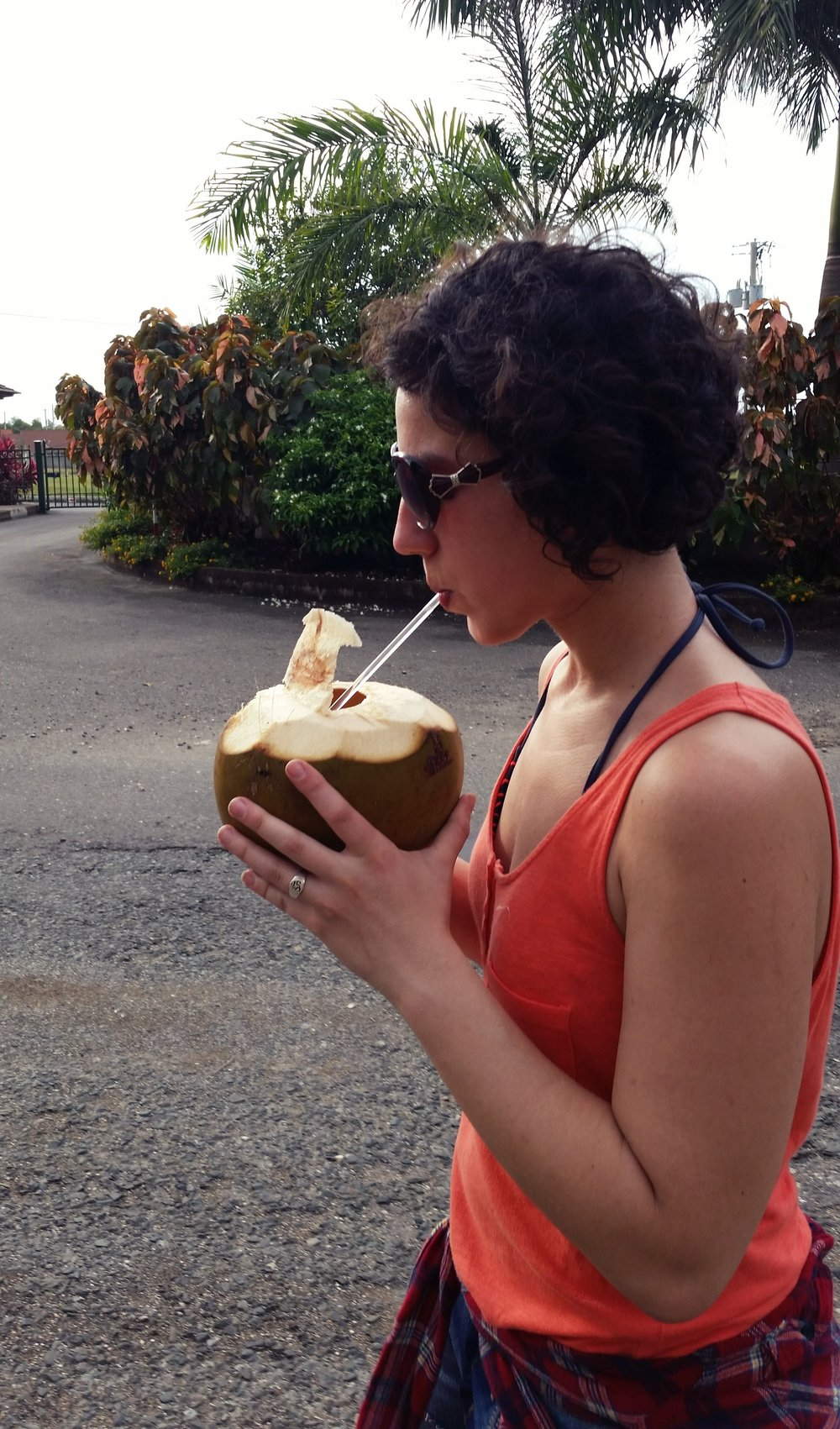 Coconuts from the Street Guys