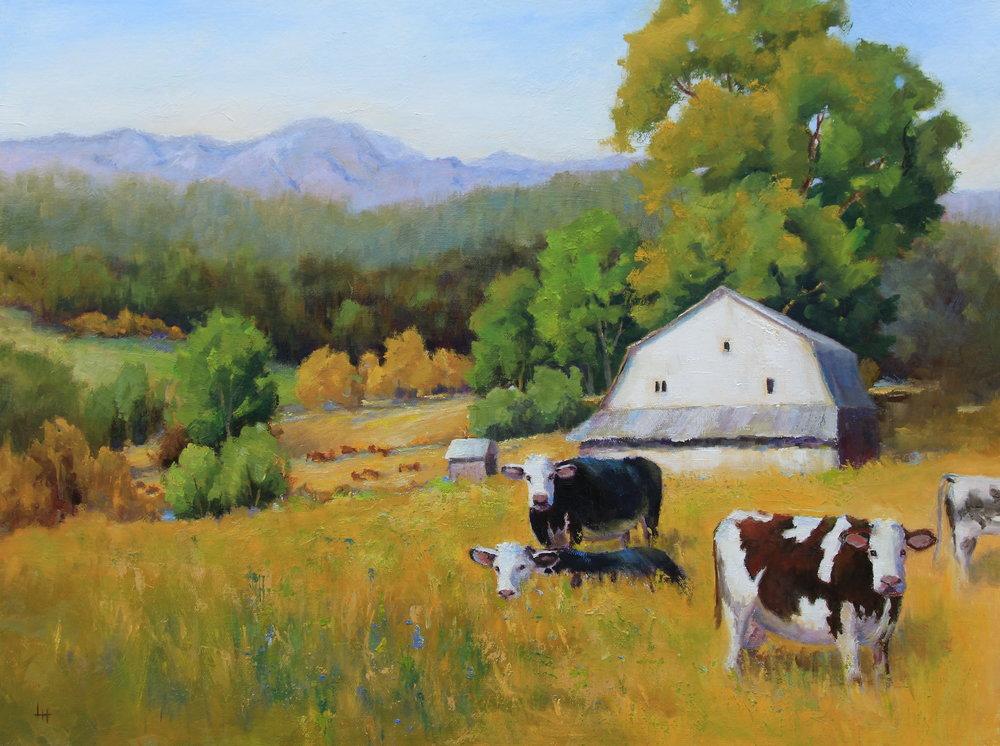 Paw Paw's Farm