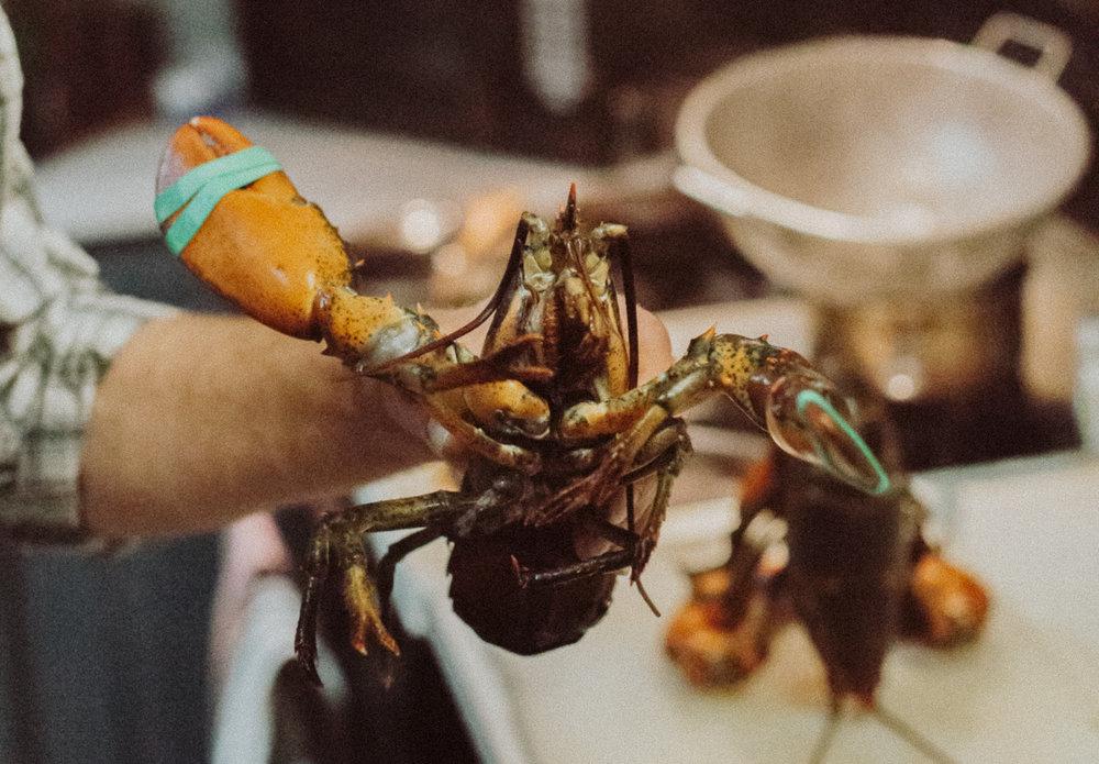LobsterDinnerWebsite (27 of 31) cropped.jpg