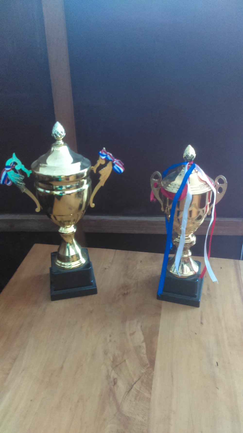 Trophies for the Junior and Youth teams who finished first in their tournaments.