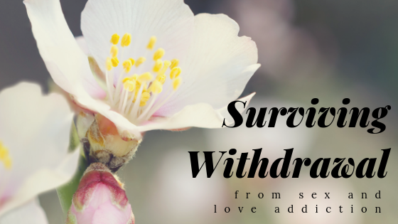 title_surviving_withdrawal_from_sex_and_love_addiction_restored_hope_counseling_therapy_ann_arbor_novi_michigan_christian.png