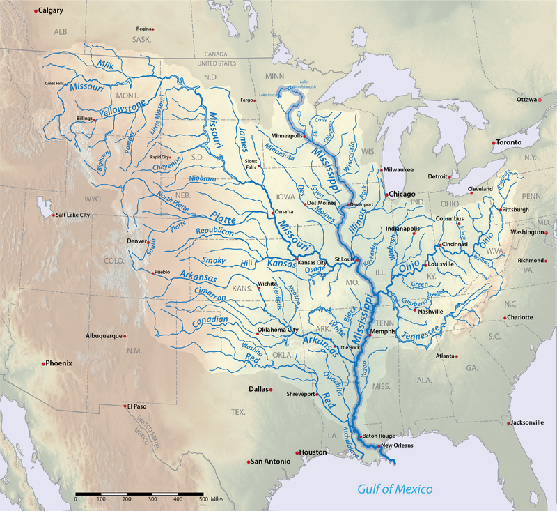 The Mississippi River and it's tributaries drain directly into the Gulf of Mexico from as far north as Canada. The range of the North American Beaver extends throughout this drainage basin.