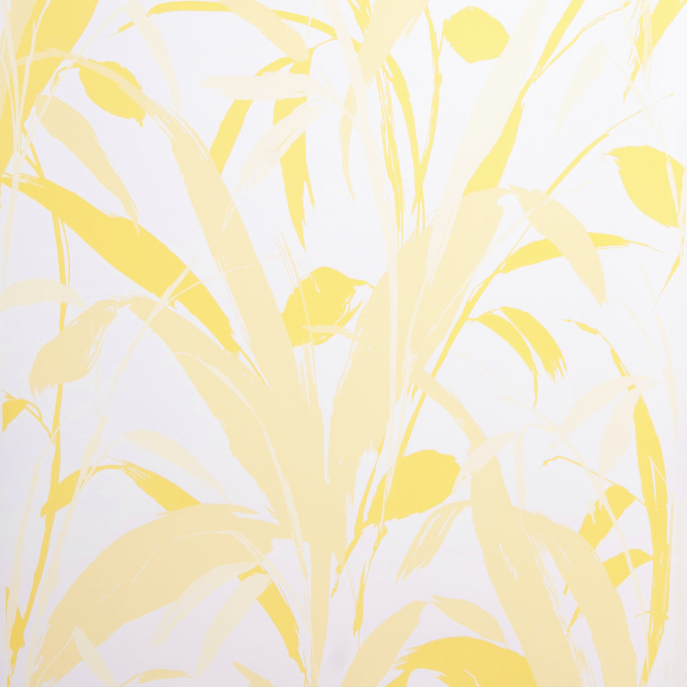yellow on white