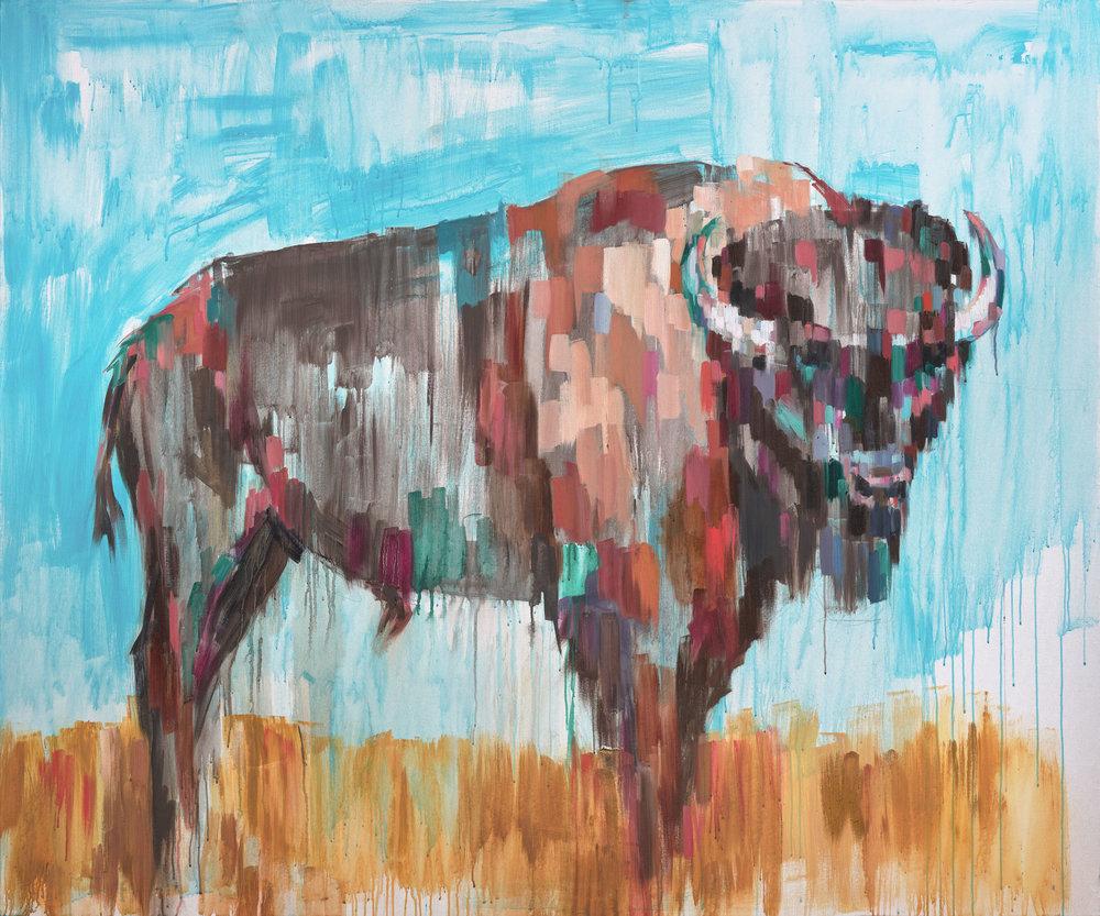 American-Bison-Sheila-Dunn.jpg