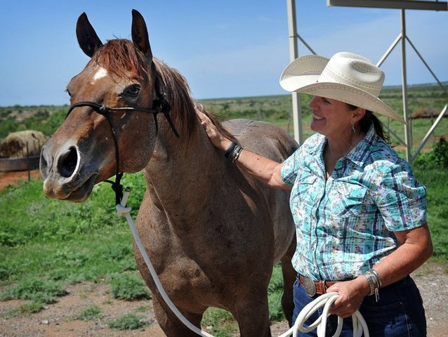 circle_bar_ranch_2_7296316_ver1.0_640_480.jpg
