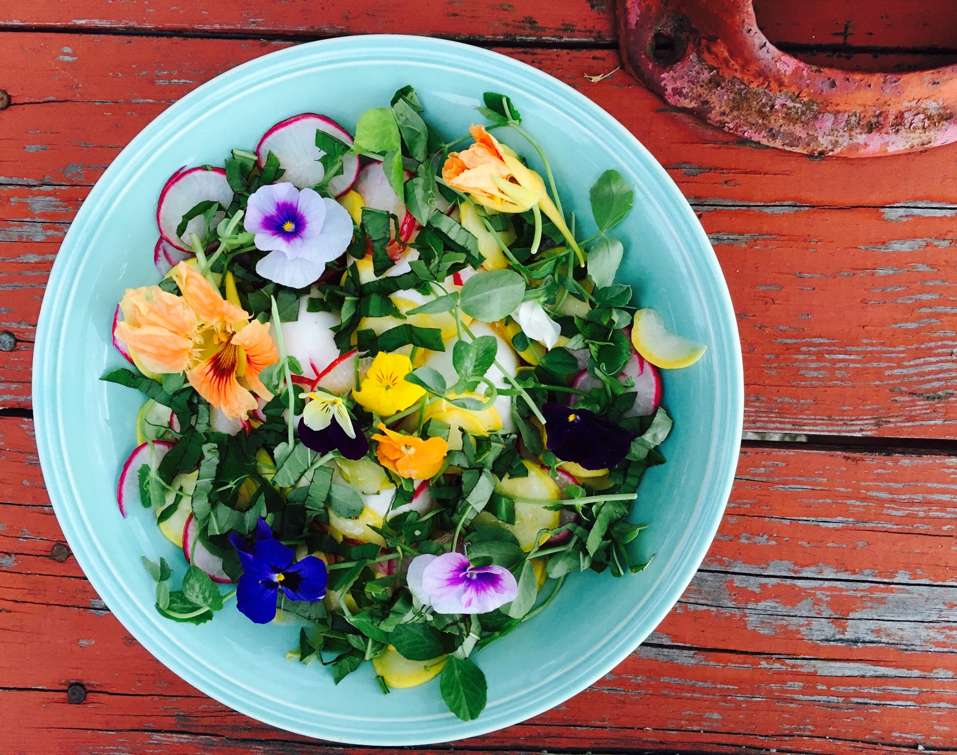 Burrata salad with edible flowers — The Vibrant Beet