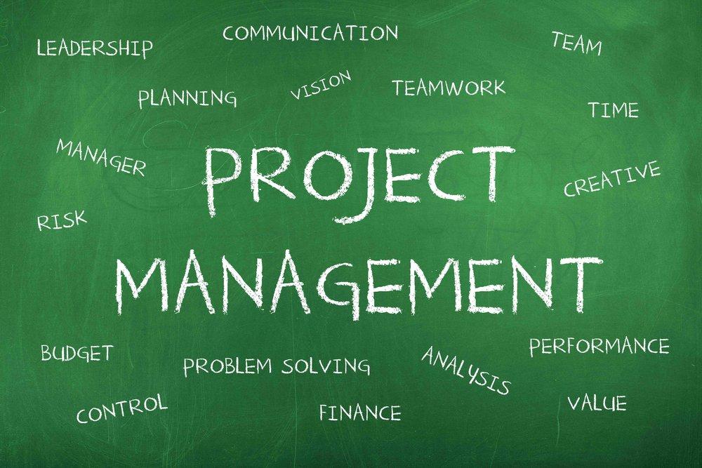 SSIT_Project_Management.jpg
