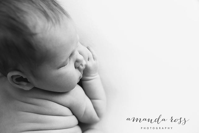 Tatum. How kissable are those cheeks?  To book your newborn session contact amandarossphotography@gmail.com or amandarossphotography.com.au  #amandarossphotography #newbornphotographer #perthnewbornphotographer #perthnewbornphotography #perthbabyphotographer  #newbornphotography #perthfamilyphotographer #perthbabyphotography #newbornphotography #perthmaternityphotography #perthmaternityphotographer #perthchildphotographer #perthphotography #newbornphotgrapherperth #babyphotographerperth #familyphotographer #familylove #perthphotographer #perthmums #perthmumsandbubs #perthchildphotographer #childphotography #perthphotographer