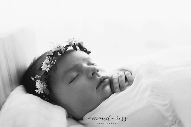 Baby Hope.  To book your newborn session contact amandarossphotography@gmail.com or amandarossphotography.com.au  #amandarossphotography #newbornphotographer #perthnewbornphotographer #perthnewbornphotography #perthbabyphotographer  #newbornphotography #perthfamilyphotographer #perthbabyphotography #newbornphotography #perthmaternityphotography #perthmaternityphotographer #perthchildphotographer #perthphotography #newbornphotgrapherperth #babyphotographerperth #familyphotographer #familylove #perthphotographer #perthmums #perthmumsandbubs #perthchildphotographer #childphotography #perthphotographer