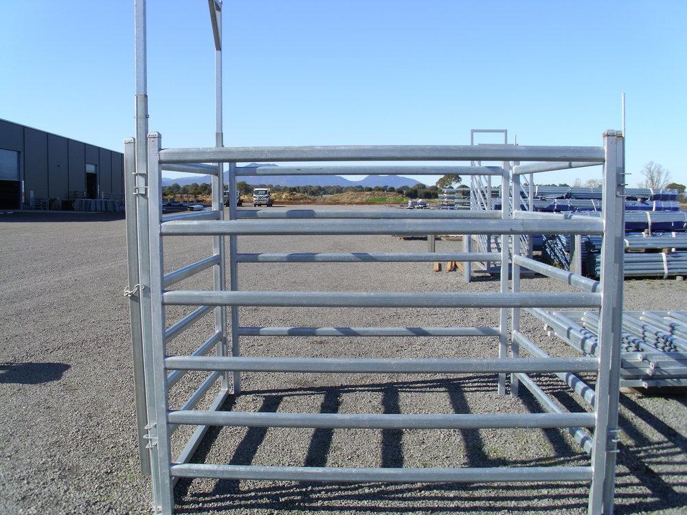 Cattle Panel Dubbo set.jpg